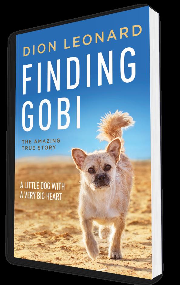 FindingGobi_3D2