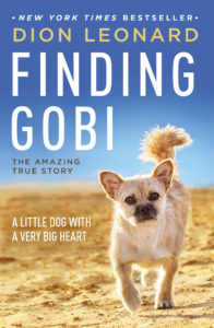 finding gobi dogs in the news uplifting dog story dog books
