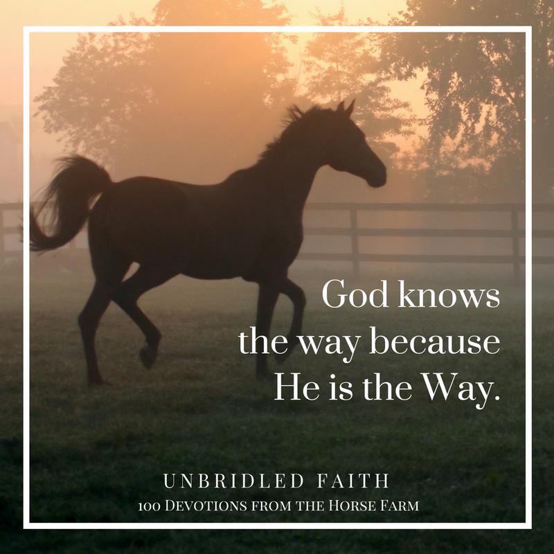 Unbridled-Faith-2