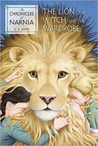 The-Lion-the-Witch-and-the-Wardrobe-brothers in literature