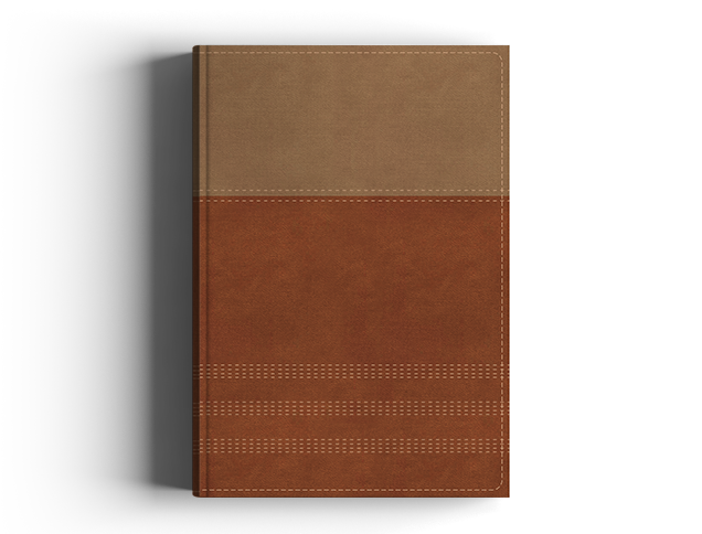 NIV Biblical Theology Study Bible Tan Leathersoft