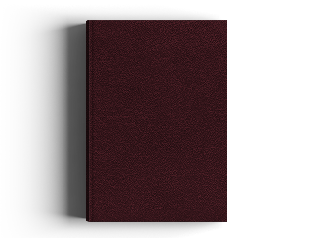 NIV Biblical Theology Study Bible Burgundy Bonded Leather