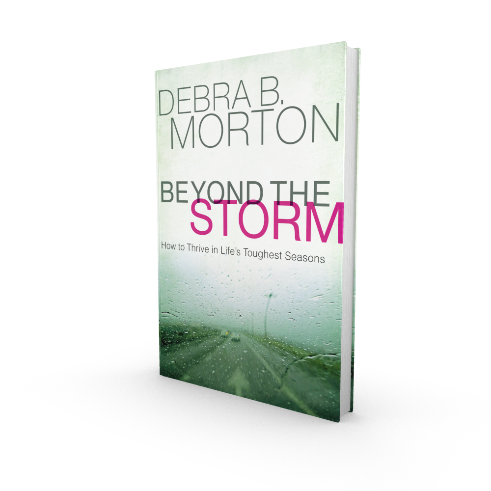 Beyond-the-Storm-3D-2